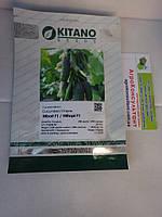 Семена огурца Нибори F1 / Nibori F1 ( Китано/ kitano Seeds) 500 шт. - корнишон, ранний