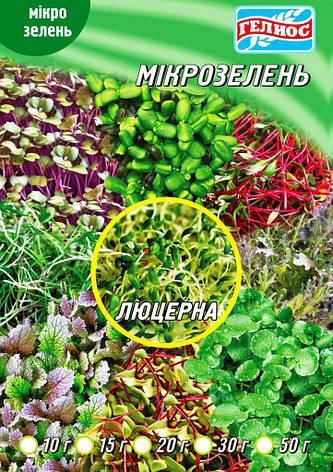 Семена микрозелень (микрогрин) люцерна, фото 2