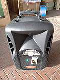 Портативная колонка с микрофонами Langting SL1007 (120W/USB/Bt/Fm), фото 2