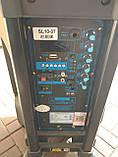 Портативная колонка с микрофонами Langting SL1007 (120W/USB/Bt/Fm), фото 5