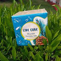 """Набор для выращивания Эko Live Cube """"ГОЛУБАЯ ЕЛЬ"""" Эко куб. Растения горшочные. Семена голубой ели.Голубая ель"""