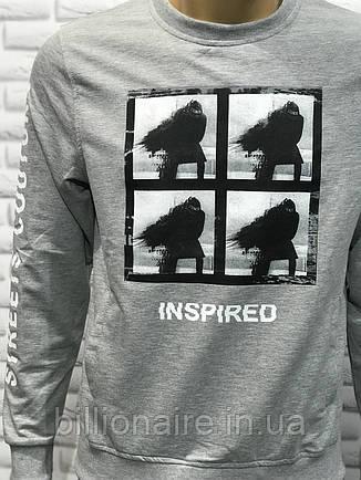 Світшот Inspired, фото 2