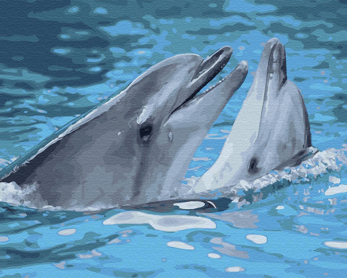 Картина за номерами Пара дельфінів (BK-GX33064) 40 х 50 см (Без коробки)