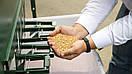 Сепаратор для очищення та калібрування зерна ІСМ-5, фото 4