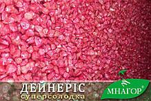 Семена кукурузы сахарной Дейнерис (Барселона) F1 50шт ТМ МНАГОР , фото 2
