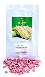 Семена кукурузы сахарной Орландо F1 200шт ТМ МНАГОР