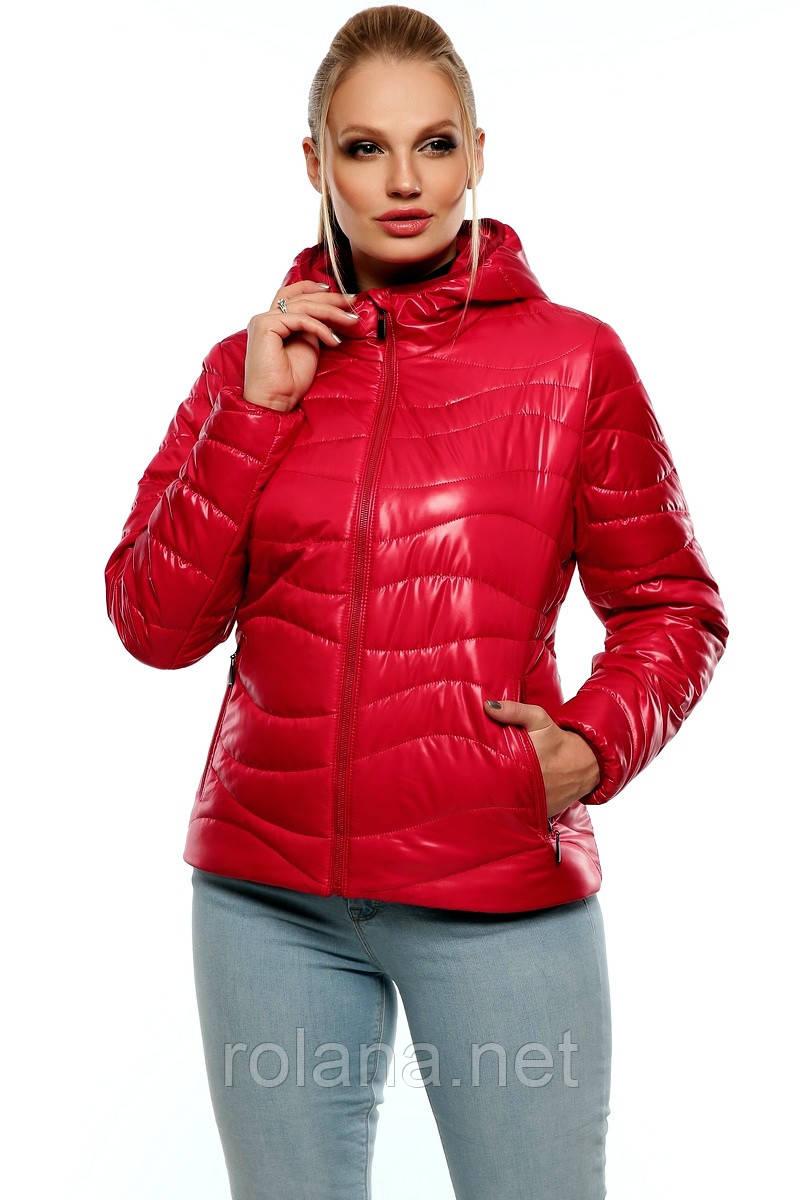 """Молодёжная короткая куртка с капюшоном. """"Красный"""""""