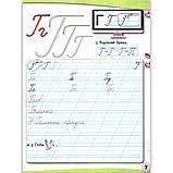 Прописи 1 клас Частина 2 із 2 До букваря Вашуленка М. Авт: Вашуленко О. Вид: Освіта, фото 5