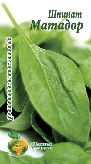 Шпинат Матадор 500 шт семян