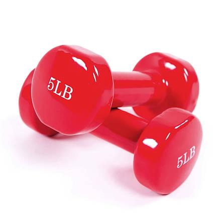 Гантели для фитнеса 2 шт 5Lb (2270гр.), фото 2