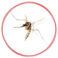 Средства защиты от комаров, москитов, клещей, ос, мошек, слепней