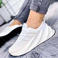 Кроссовки женские в стиле Adidas Sharks адидас шаркс белые, фото 1