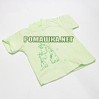 Детская кофточка р 74 короткий рукав кнопки футболка для новорожденных малышей грудничков КУЛИР 3174 Зеленый В