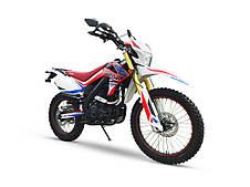 Мотоцикл HORNET DAKAR (250 куб.см), фото 2