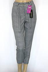 Жіночі брюки в клітинку