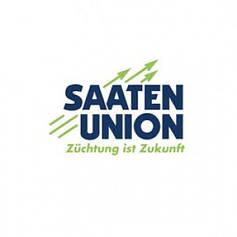 Кукуруза Saaten Union