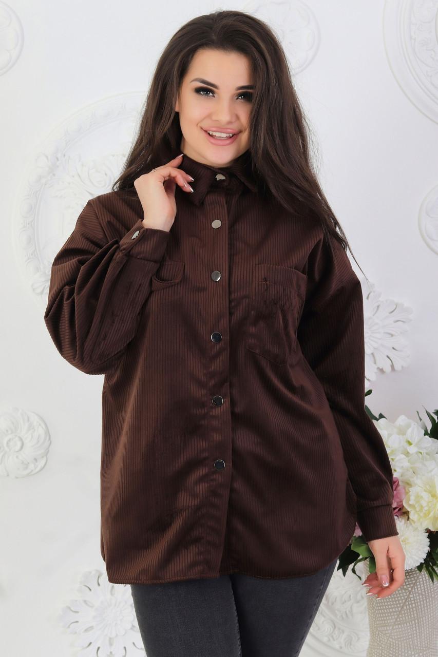 Женская стильная велюровая вельветовая рубашка на кнопках, норма и батал большие размеры