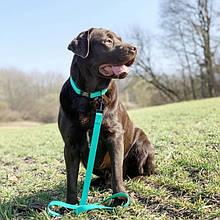 Повідки для собак з полімерним покриттям
