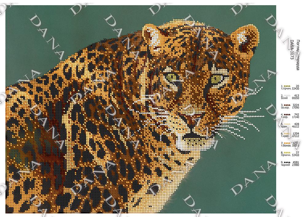 Погляд леопарда