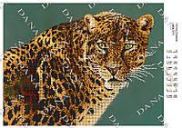 """Схема для частичной вышивки бисером """"Взгляд леопарда"""""""