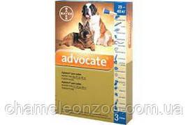 Адвокат для собак 25-40 кг 1 пипетка
