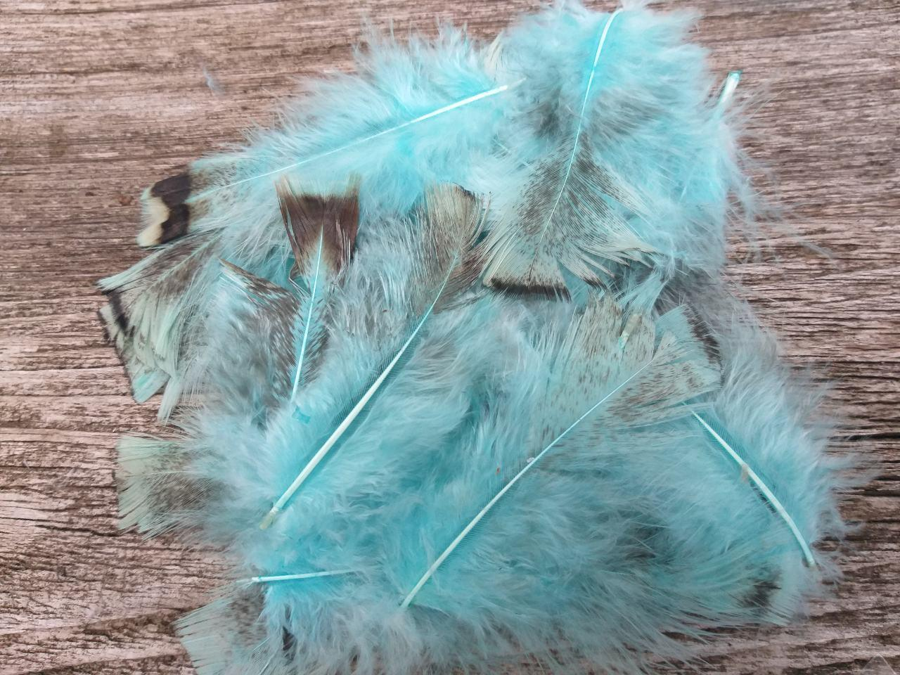 Маленьке пухкеньке пір'ячко голубого кольору, 10 шт. в упаковці, довжина пера 8-16 см., 25 грн.