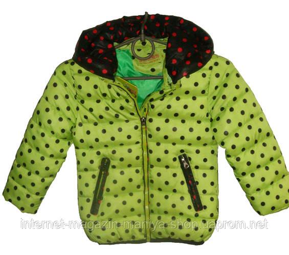 Женская куртка детская горох