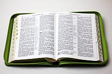Біблія 13х19 (зелена, шкірзам, золото, індекси, блискавка), фото 3