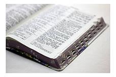 Біблія середнього формату (весняні квіти, шкірзам, фіолетовий обріз, індекси, без застібки, 15х20), фото 3