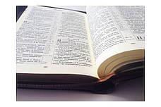 Библия (темно-коричневая, кожзам, золото, индексы, молния, 14х19), фото 3