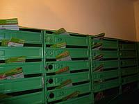 Распространение в Чернигове по почтовым ящикам. Цена от 5 коп/шт!