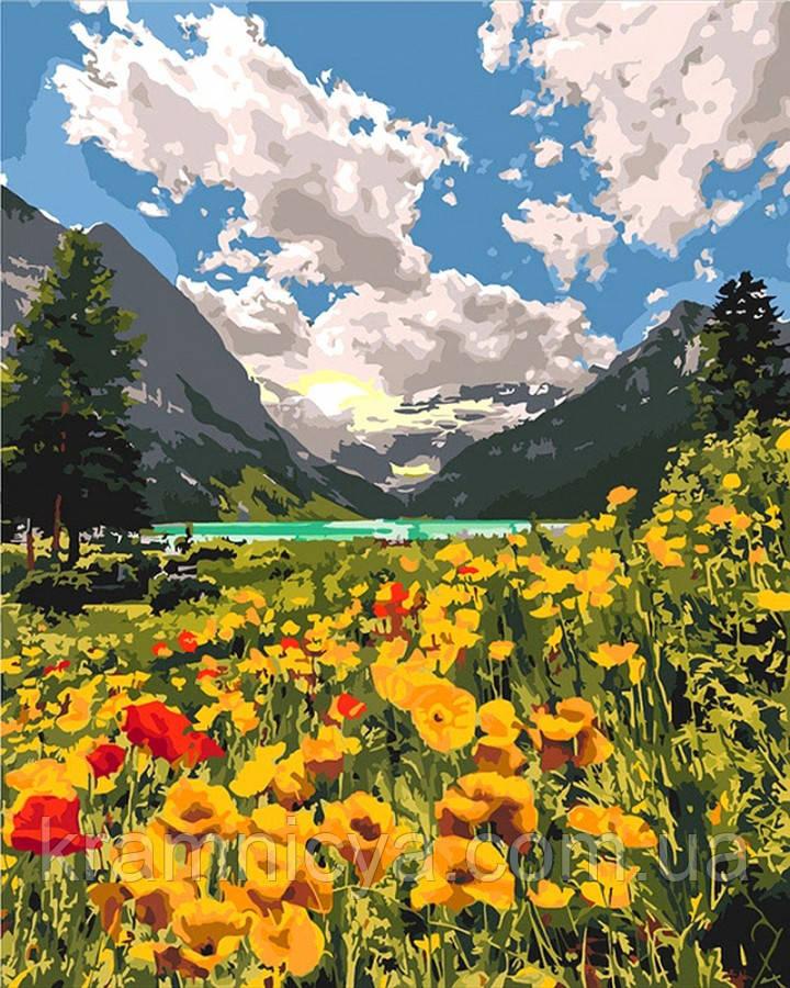 Картина по номерам 40x50 Величественные Альпы (КНО2268)
