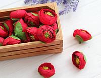 Ранункулюс бутон   № 1 ,   красный                   100 шт, фото 1