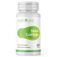 Акулий Хрящ (Shark Cartilage) США, 60 капсул - необходимый природный иммуномодулятор