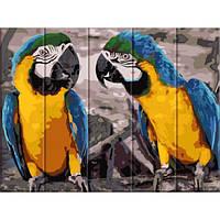 Картина по номерам на дереве 2 попугая ASW057 30x40 см., Art Story