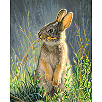 """Алмазная мозаика """"Кролик в траве"""", картина стразами 25*20см"""