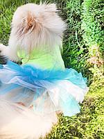 Платье для собак Карнавал 29*46