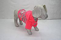 Блайзер толстовка для собаки Неон Собаки, Лори, 21*27, Лето, Украина