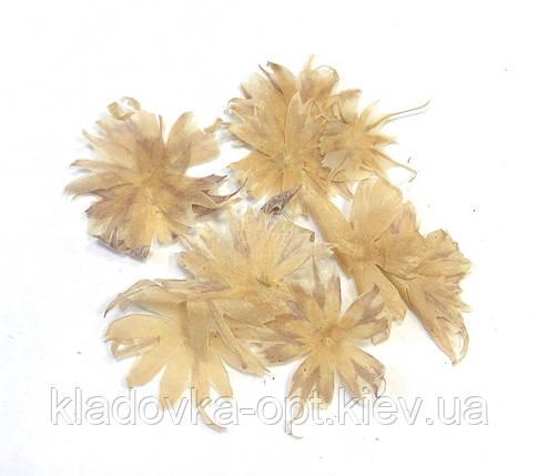 Сухоцветы №51, фото 2