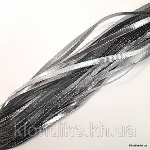 Тесьма металлизированная, ширина: 5 мм, Цвет: Серебро (5 метров/уп.)