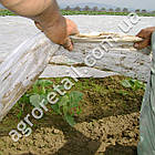 Агроволокно Agreen укрывное белое плотность 30 рулон 1.6х100 м, фото 3
