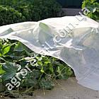 Агроволокно Agreen укрывное белое плотность 30 рулон 3.2х50 м, фото 2