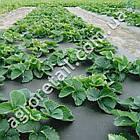 Агроволокно Agreen двухслойное черно-белое плотность 50 рулон 3.2х50 м, фото 3