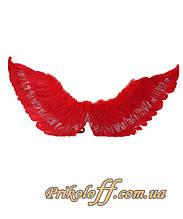 "Крылья ангела ""Красное перо"", 80 х 55 см"
