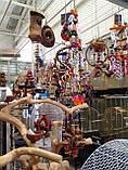 Игрушка для крупного попугая, фото 6