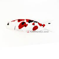 Игрушка рыба кои 30см с кошачьей мятой