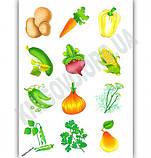 Я читаю по складах Книжка з наліпками Овочі та фрукти Вид: УЛА, фото 3
