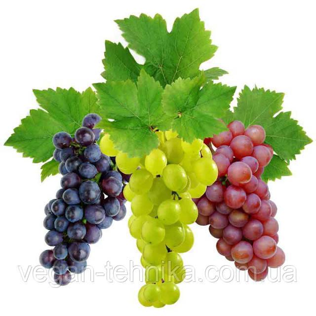 Полезные свойства винограда. Состав, калорийность и польза для здоровья.