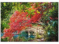 Пазлы Японский сад. 1000 элементов. Castorland С-103768