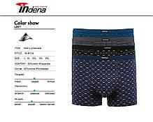 Мужские стрейчевые боксеры «INDENA»  АРТ.95124, фото 3